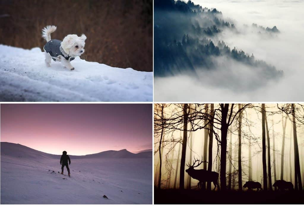 winter creative writing images